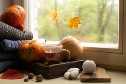 Autumn still life near the rainy window with cup of hot tea,wool sweaters,ripe pumpinks,candle and autumn leaves.Cozy autumn composition.