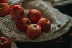 Autumn still life. Red apples with dew drops on the knitted fabric.