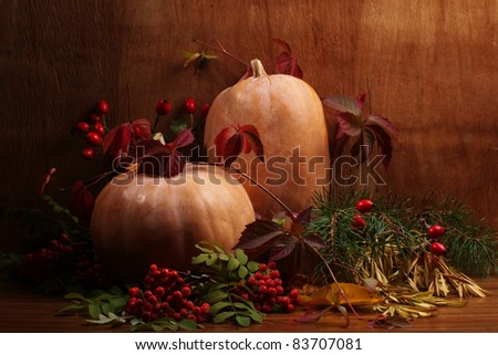 Autumn still life with a pumpkin. Halloween.