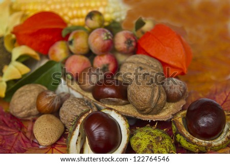 Autumn still life with different fruits and autumn leaves