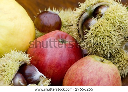 autumn still life with fruit and chestnut