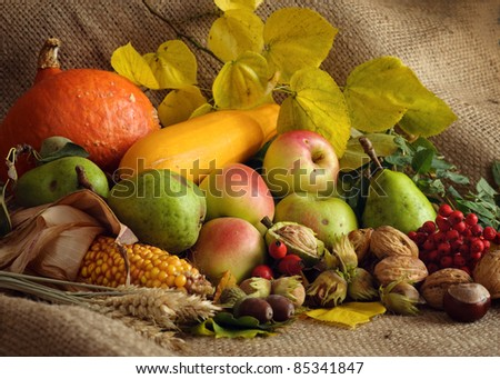 Autumn still-life with large group of products like apple, pear, pumpkin, corn, wheat, hazelnut, chestnut and more