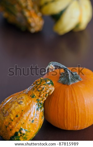 Autumn still life with pumpkin and gourd.