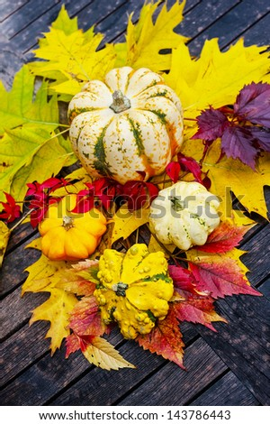 autumn still life with pumpkins #143786443