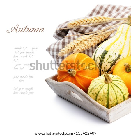 Autumn still-life with pumpkins isolated over white