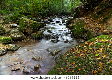 autumn stream or small river with small rapid and fallen leafs long exposure results in smooth surface