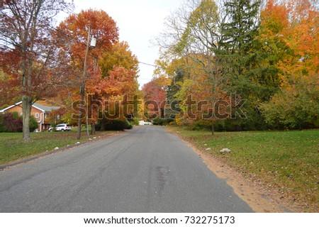 Autumn Suburban Street USA #732275173