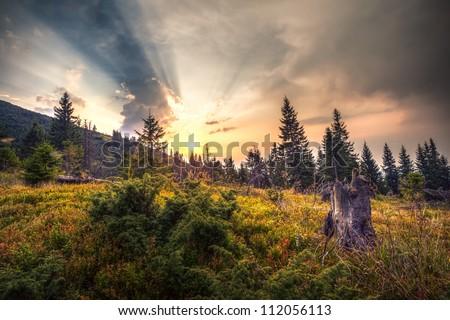 Autumn sunset in the mountains of Ukraine