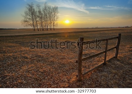 Autumn sunset on the field; a group of trees and a single piece of an old fence - stock photo