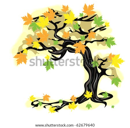 Autumn tree. - stock photo