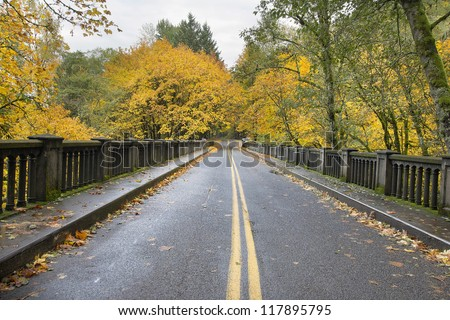 Autumn Trees Along Historic Columbia Highway Bridge Lined with Giant Maple Trees