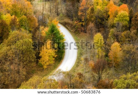 Autumn trees and winding road from above