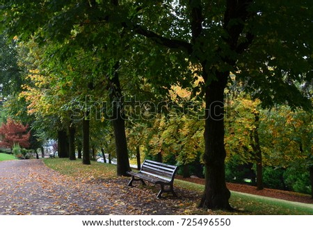 Autumn Trees in Saint-Galmier - Shutterstock ID 725496550