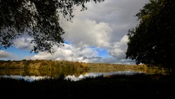 autumn trees on a lake with clouds and silhouetted trees