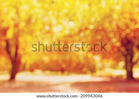 autumn trees out of focus, natural bokeh background  #209943046