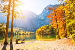 Autumn trees with red-yellow leaves on the shore of lake in Alps mountains, Austria