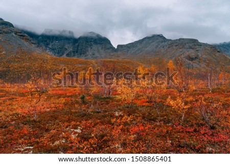 Autumn tundra on the background of cloudy misty mountains  in rainy weather