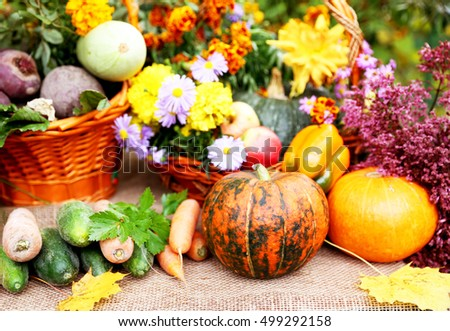 Autumn vegetables are in the basket. Organic harvest #499292158