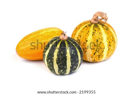 Autumn vegetables - gourds