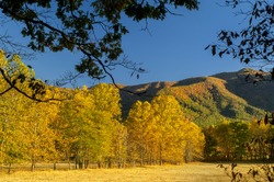 Autumn view at Cades Cove of Great Smoky Mountains in Tennessee, USA.