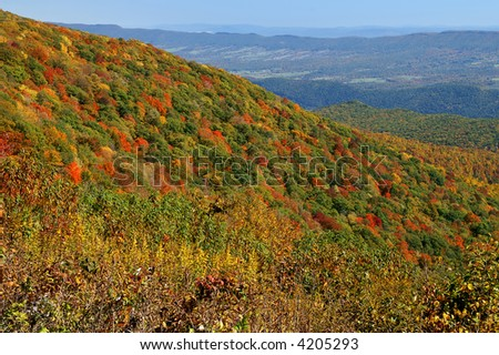 Autumn View From Spruce Knob at Monogahela National Park West Virginia