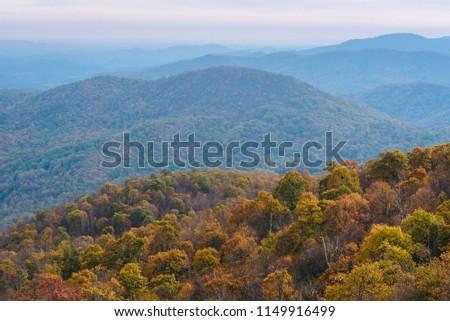 Autumn view of Blue Ridge mountain ridges from Skyline Drive in Shenandoah National Park, Virginia #1149916499