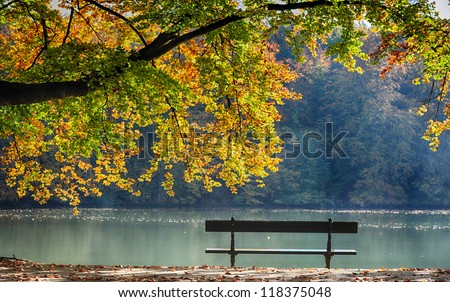autumn view of lake , trees and bench