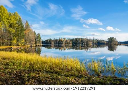 Autumn view of Liesjarvi National Park and Lake, Tammela, Finland Foto stock ©