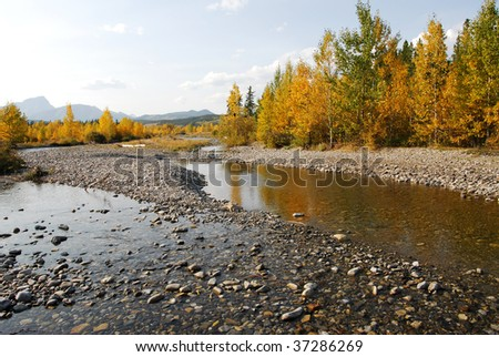 Autumn view of mountain creek bed and valley in kananaskis country, alberta, canada