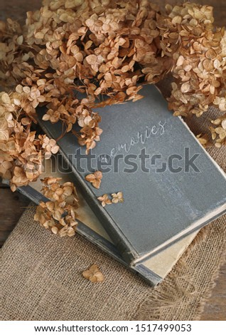 autumn vintage still life. dry hydrangea flowers, old books on rustic background. beautiful autumn atmosphere composition. fall season concept. copy space #1517499053