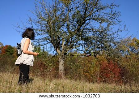 Autumn walk - woman collecting mistletoe
