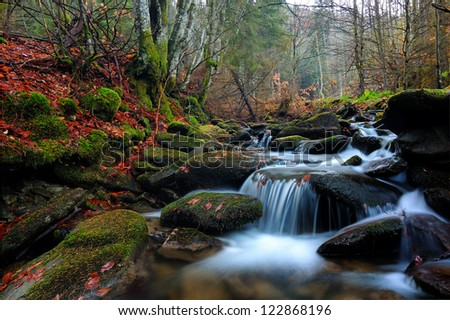 Autumn water scape in Romanian forest