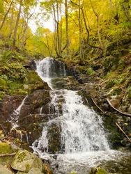 Autumn Waterfall in Vitosha Mountain,Bulgaria
