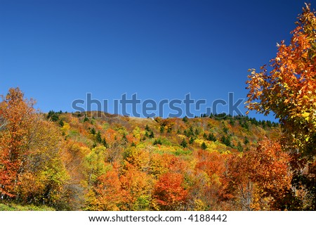 Autumn West Virginia Hillside