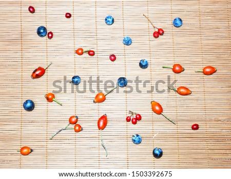 autumn wild berries different berries. #1503392675