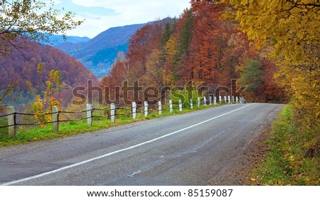 Autumn winding secondary road in the mountain forest
