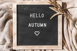 Autumnal Background. Black letter board with text phrase Hello Autumn and dried plant lying on white knitted sweater. Top view flat lay. Thanksgiving banner. Hygge mood cold weather concept