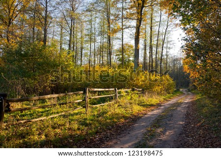 Autumnal dirt road leading by wooden fence in sunset