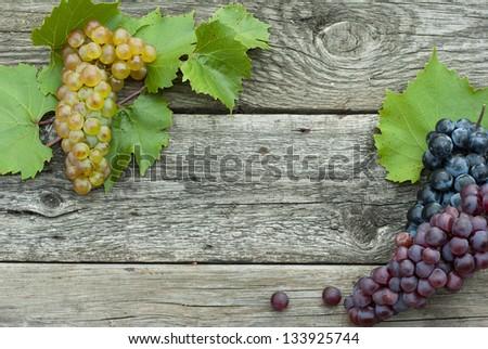 autumnal fruits frame, wooden background