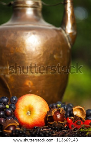autumnal fruits in front of an antique copper pot
