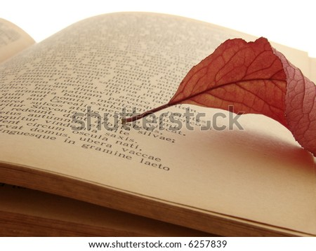 "autumnal leaf on the page of Virgil's ""Georgicon"" (ancient agricultural didactic poem)"