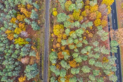autumnal mixed forest (deciduous forest, Coniferous forest) located between a road and a Railway line - from a bird's eye view
