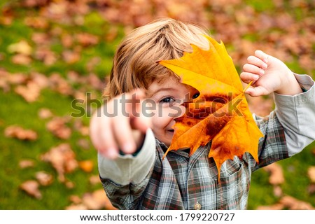 Autumnal mood. Little child boy in autumn orange leaves, outdoor