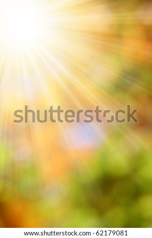 autumnal natural background blurring with sun rays