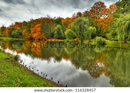 Autumnal scenery of pond in Polish park
