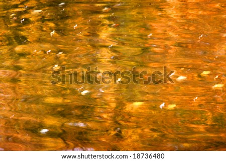 Autumnal water reflection - stock photo