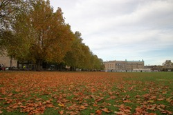 Auumn in Cambridge, United Kingdom, open green area with colorful autumnal leaves lying on it, trees with fall foliage, on left side street with parked cars, people walk, in background building.