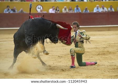 AVILA, SPAIN - JUNE 2: Cesar Jimenez fights in the welfare bullfight of Avila, a city near to Madrid in the middle of Spain in June 2, 2012. - stock photo
