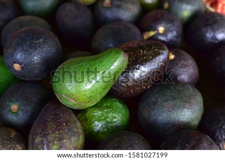 Avocado also refers to the Avocado tree's fruit, which is botanically a large berry containing a single seed. Avocados are very nutritious and contain a wide variety of nutrients. Selective focus #1581027199