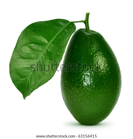 Avocado with leaves on a white background